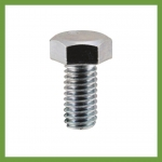 M12 Stainless Steel Bolt